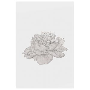 The Flowering Print Metal Print Small Cream